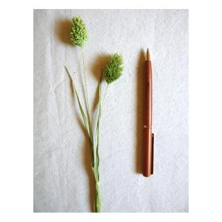 【荒木雕塑藝品】紅豆杉原子筆(小)