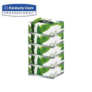 【舒潔】盒裝面紙 180抽x5盒x10串/箱