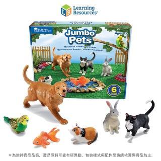 【美國教學資源】超大家庭寵物6入(LER0688)