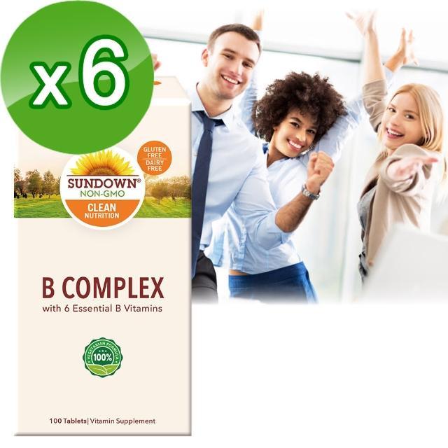【美國Sunmomo1台down日落恩賜】每日綜合B群錠-100錠(6瓶組)