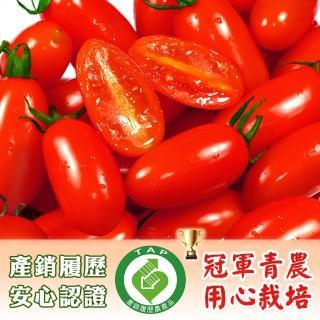 【鮮果有邑】美濃嚴選薄皮香甜爆汁玉女小蕃茄禮盒-4盒