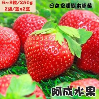 【阿成水果】日本空運草莓禮盒 2盒(16-22粒/600g/盒)