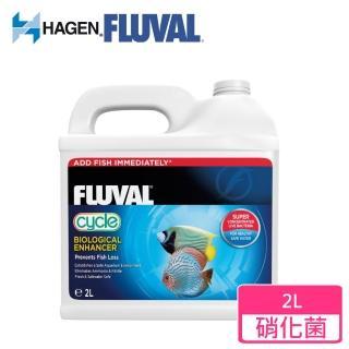 【HAGEN富濾霸】高濃縮全方位硝化菌(2L)