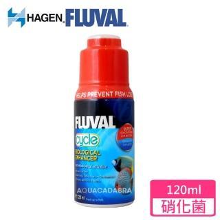 【HAGEN富濾霸】高濃縮全方位硝化菌(120mL)