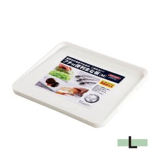 【ASVEL】銀離子抗菌砧板-L(廚房用品 衛生安全 健康環保 斜面 雙面)