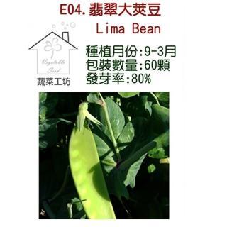 【蔬菜工坊】E04.翡翠大莢豆種子(改良種)