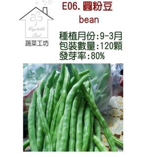 【蔬菜工坊】E06.圓粉豆種子(壞豆)