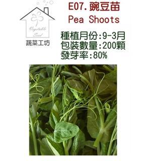 【蔬菜工坊】E07.豌豆苗種子(快炒店的豆苗菜)