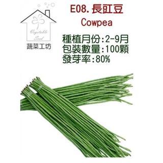 【蔬菜工坊】E08.長豇豆種子