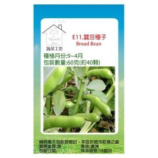 【蔬菜工坊】E11.蠶豆種子