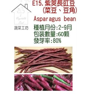 【蔬菜工坊】E15.紫莢長豇豆種子(菜豆、豆角)