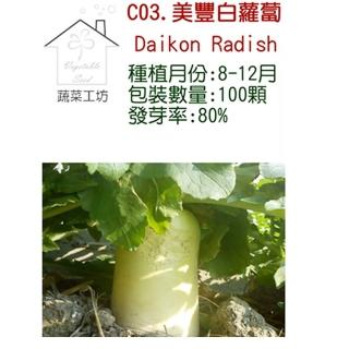 【蔬菜工坊】C03.美豐白蘿蔔種子(日本進口超雲大根)